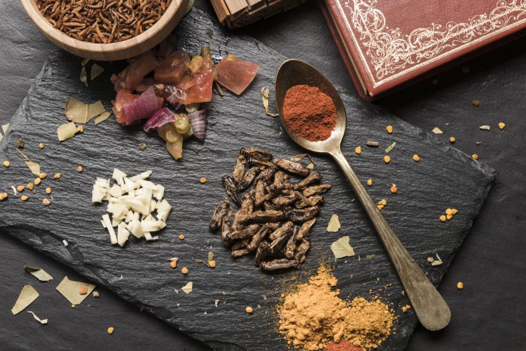 vente insecte - achat insecte comestible